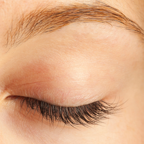 Eyebrow Shaping Carrum Downs